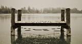 frosty loneliness 2